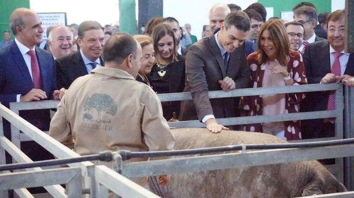 Burla, mofa y befa al confundir Pedro Sánchez el jamón ibérico con... el serrano