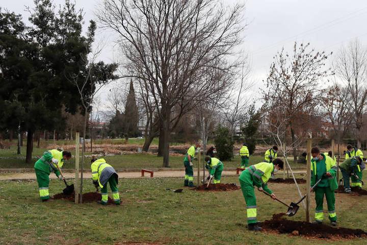 Alumnado del itinerario Auxiliar de jardinería realizando prácticas en el parque de La Quebradilla. Fotografía: Ayuntamiento de Azuqueca