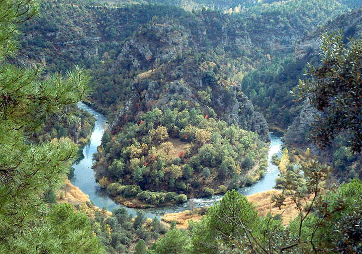 Al cumplirse 20 años como Parque Natural, se solicitará que una parte del entorno natural del Alto Tajo sea declarado Parque Nacional