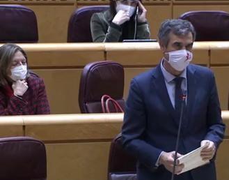 """Román, rotundo en el Senado : """"Trabajen para controlar la pandemia y tener una Navidad segura, no solo para seguir en el poder"""""""