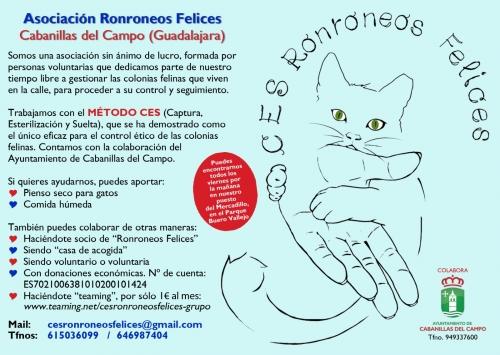 La asociación que controla las colonias felinas en Cabanillas estará presente en el Mercadillo de los viernes