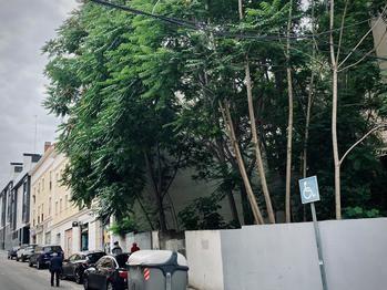 Arranca el plan de inspección de solares del Ayuntamiento de Guadalajara