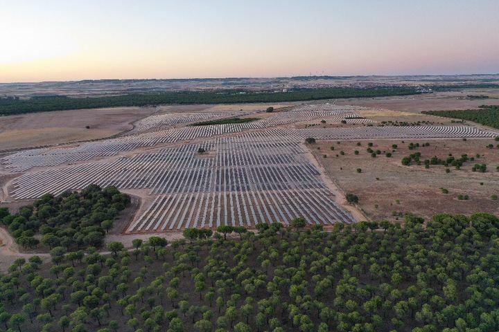 Solaria recibe más de 2.000 solicitudes de empleo en una semana para su complejo fotovoltaico Cifuentes-Trillo 626MW