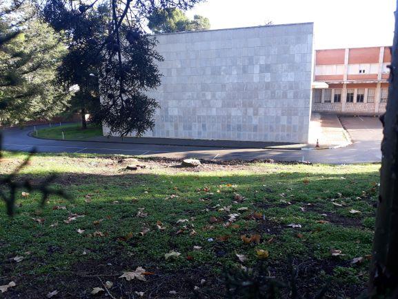 El nuevo Campus Universitario de Guadalajara comienza talando árboles