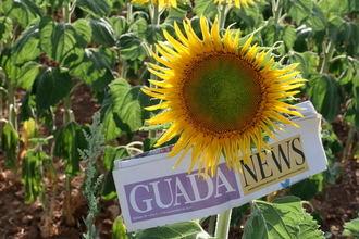Suben las temperaturas este martes en Guadalajara llegando el mercurio a los 34ºC