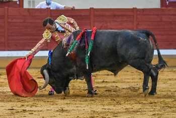 ¡Volvieron los toros a Alcalá!