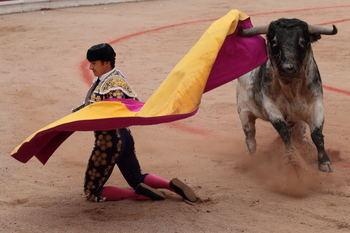 Toros en el Coso de las Cruces de Guadalajara en las Ferias de 2019. Foto : EDUARDO BONILLA
