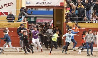 Cuarenta ayuntamientos de Guadalajara piden a la Junta de CLM poder hacer festejos taurinos