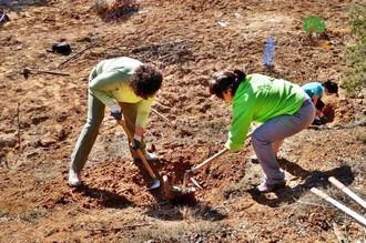 Este domingo, los voluntarios continuarán ganándole la batalla al ailanto en el bosque de Valdenazar