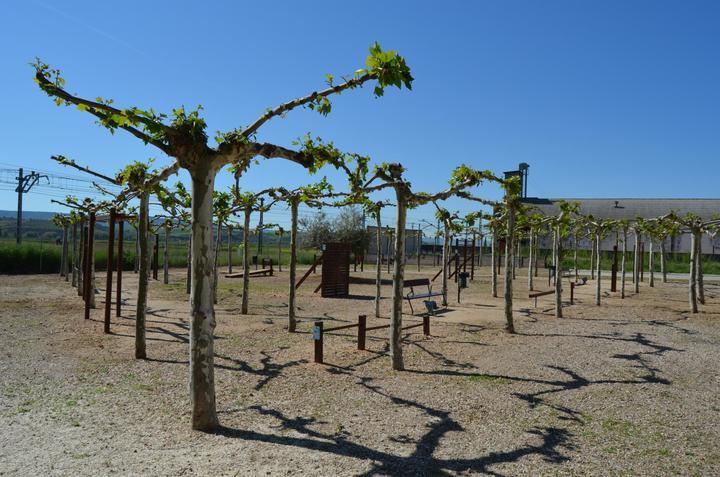 El Ayuntamiento de Yunquera de Henares revitaliza el Parque de San Cleto