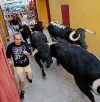 31 quemados por el Toro de Fuego, un positivo de 1,03 mgrs de alcohol, 5 vándalos de Alcalá detenidos y 3 incendios en la capital son el balance del sábado de Ferias de Guadalajara