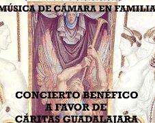 """La Sala de las Batallas del Palacio del Infantado acoge el concierto benéfico """"Música de cámara en familia"""""""