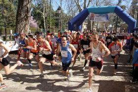 X Carrera Popular Ciudad del Doncel: ver Sigüenza mientras se hace deporte en Sigüenza