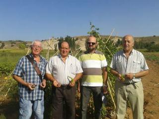 """Los jubilados aprenden nuevas técnicas del cultivo con la visita al Taller de Empleo """"La Dehesa de Jadraque"""""""