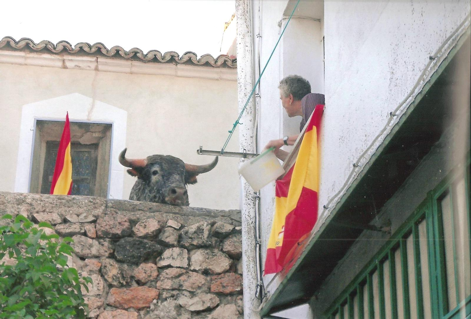 """La Peña """"El Quite"""" de Yunquera organiza la XI edición del concurso de Fotografía Taurina"""