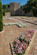 El entorno del Torreón de Álvar Fáñez: un jardín de traza árabe, detalle monumental de diciembre