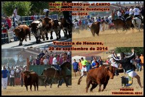 Los festejos taurinos de Yunquera de Henares acaparan gran parte de los premios para la Gala ToroMundial 2014