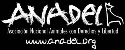 """Anadel denuncia a los dueños de una finca en Almoguera por """"tener a sus animales sin comida durante meses"""""""