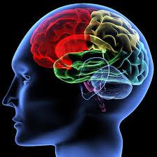 Siga estos 6 consejos si quiere tener una mente sana este 2015