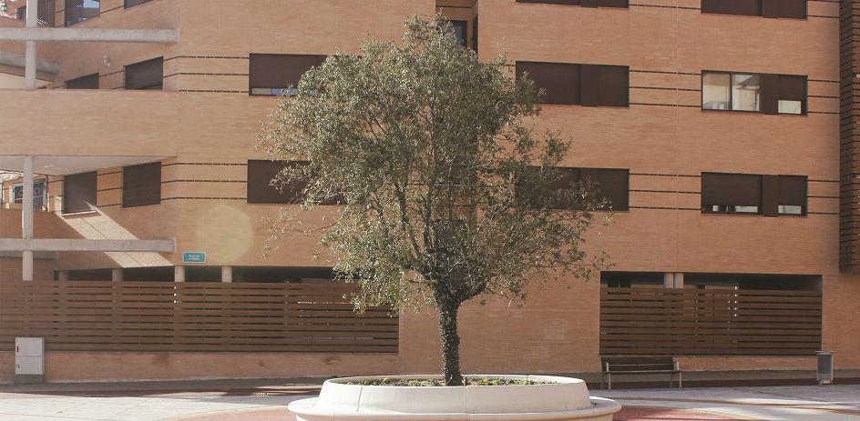 La plaza de la Encina de Valdeluz se transforma en un espacio acogedor, funcional y útil