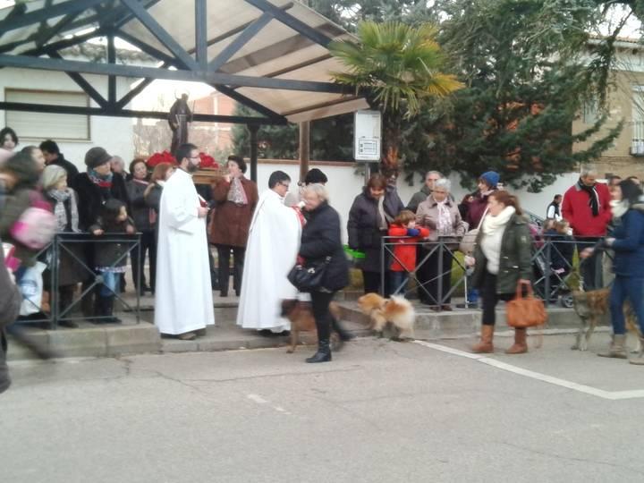 Yunquera de Henares ha celebrado este fin de semana la festividad de San Antón