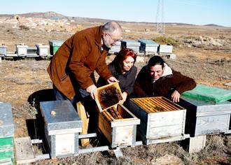 La Asociación Española de Apicultura se integra en el Proyecto Serranía Celtibérica