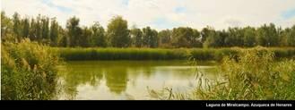 Ampliación de la Red Natura 2000 en el río Henares en el término municipal de Azuqueca de Henares