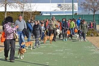 Más de 70 participantes en la primera actividad para perros de AspropeGU y el Ayuntamiento de Marchamalo