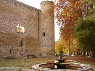 El Ayuntamiento de Brihuega, con el apoyo de FADETA, emprende la restauración de dos de los lienzos del Castillo de Piedra Bermeja