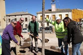 La Olma Nueva ya preside la Plaza Mayor de Pareja