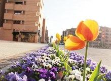Guadalajara disfrutará de un miércoles soleado y con temperaturas primaverales de 22ºC