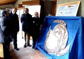 El Geoparque de Molina estará muy presente en el Museo de Paleontología de Castilla-La Mancha