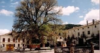 El Ayuntamiento de Pareja reforma la Plaza de la Constitución