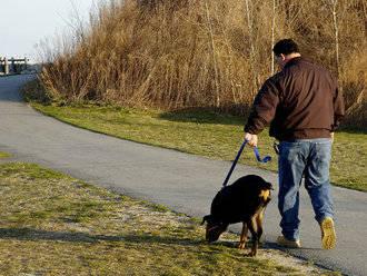 """Este domingo, primer paseo urbano dentro de la campaña """"Úsame"""" dirigida a dueños de canes"""