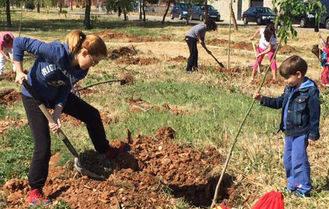 Villanueva planta sesenta nuevos arces con motivo del Día Internacional del Árbol en la cita organizada por las concejalías de Medio Ambiente e Infancia y Juventud