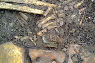 Hallan los restos de dos personas en Pareja