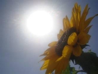 Cielos nublados y bochorno este lunes en Guadalajara con el mercurio en los ¡28ºC!