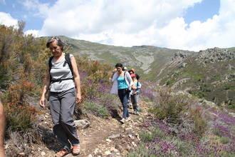 Valverde de los Arroyos y Campillo de Ranas estrenan itinerarios apiturísticos