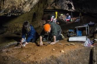 """Investigan en el lugar donde apareció un metacarpo de Neandertal, en la Cueva de """"Los Casares"""""""
