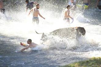 14.000 aficionados llenan Trillo en la vigésima edición de las Vacas por el Tajo