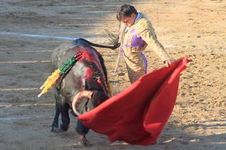 La falta de toro aguó la novillada de la Feria de Cabanillas del Campo
