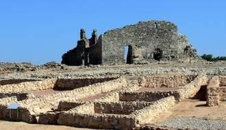 Las universidades de Harvard, Frankfurt y Alcalá inician una investigación arqueológica en Recópolis