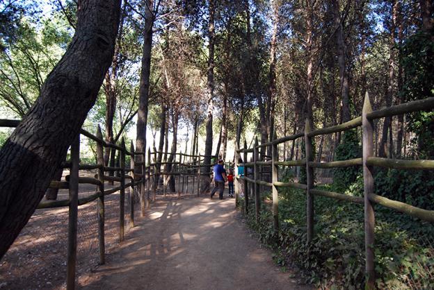 Ciudadanos pide que se le de un 'lavado de cara' al Zoo de Guadalajara