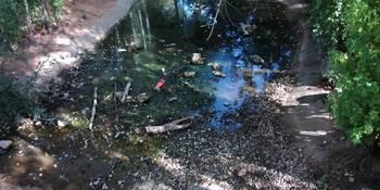"""""""Lamentable y vergonzoso"""", apelativos usados por el PP azudense para hablar del Parque de la Quebradilla"""