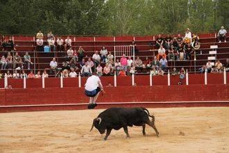 El valenciano Antonio Ojeda, campeón del Concurso de Recortes de Trillo