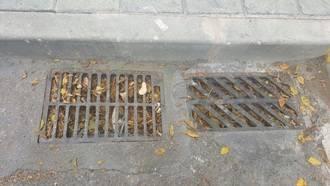 Ciudadanos Azuqueca solicita al equipo de Gobierno una actuación urgente en materia de limpieza viaria