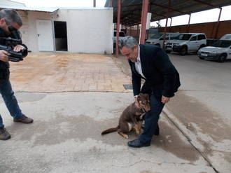 'Hogar amigo', el núcleo zoológico de la Mancomunidad Vega del Henares