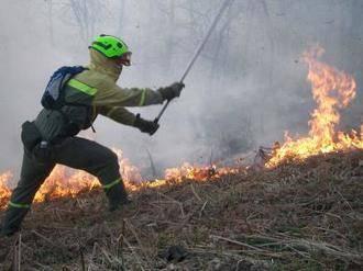 De los 781 incendios forestales en lo que va de año en Castilla La Mancha, 271 han sido por negligencia