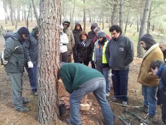 La Diputación pone en marcha nuevos cursos de resinación para seguir generando empleo en el medio rural