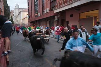 Tercer encierro de las Ferias de Guadalajara, rápido y sin heridos